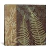"iCanvas ""Ferns I"" Canvas Wall Art by Erin Clark"