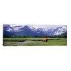 iCanvas Panoramic Katmai National Park, Kukak Bay, Alaska Photographic Print on Canvas