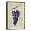 iCanvas 'Grapes' by Erin Clark Painting Print on Canvas
