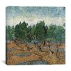 """iCanvas """"Olive Grove"""" Canvas Wall Art by Vincent van Gogh"""