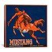 iCanvas Mustang Brand Fruit Vintage Crate Label Canvas Wall Art