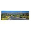 iCanvas Saguaro National Park, Tucson, Pima County, Arizona Photographic Print on Canvas