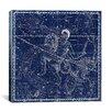 iCanvas Celestial Atlas - Plate 21 (Capricornus, Aquarius) by Alexander Jamieson Graphic Art on Canvas in Blue