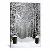 iCanvas Winter Time Photographic Print on Canvas