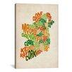 "iCanvas ""Text Map of Ireland VI"" by Michael Thompsett Textual Art on Canvas"