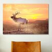 iCanvas 'Elk Sunrise in the Badlands' by Gordon Semmens Photographic Print on Canvas