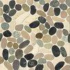 Bedrosians Hemisphere  Random Sized Stone Pebble Tile in Malaga Bay