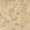 Bedrosians Hemisphere Random Sized  Stone Pebble Tile in Antigua