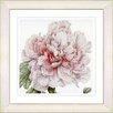Studio Works Modern Vintage Botanical No. 54W by Zhee Singer Framed Giclee Print Fine Wall Art