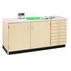 Shain Storage Bench