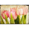Marmont Hill Pink Tulips CU by Malek Painting Print on Wrapped Canvas