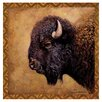 Thirstystone Bison Portrait Occasions Coasters Set (Set of 4)