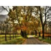 Art Effects Rainy Morning on Sparks Lane by Danny Head Wrapped Photographic Print on Canvas