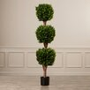 Darby Home Co Dolan Topiary in Pot