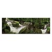 Artist Lane Forest Flow by Andrew Brown Wrapped Photographic Print on Canvas