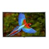 """Elite Screens SilverFrame High Contrast Grey 84"""" diagonal Fixed Frame Projection Screen"""