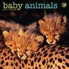 TFPublishing 2016 Baby Animals Mini Calendar
