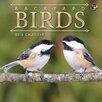 TFPublishing 2016 Backyard Birds Mini Calendar