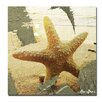 Ready2hangart 'Abstract Star Fish' by Alexis Bueno Wrapped Canvas Wall Art