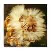 Ready2hangart 'Pom Flower' by Alexis Bueno Oversized Wrapped Canvas Wall Art