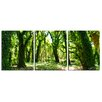 Ready2hangart 'Mystic Forest' by Chris Doherty 3 Piece Wrapped Photographic Print on Canvas Set