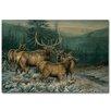 WGI-GALLERY Broken Silence Elk Painting Print on Wood