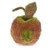 """Boston International 6"""" Moss Apple Home Accent Sculpture"""