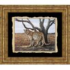 Classy Art Wholesalers Promotional Line Cheetah by Vivian Flasch Framed Photographic Print