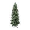 Northlight Seasonal 9' Washington Frasier Fir Slim Artificial Christmas Tree with Clear Lights