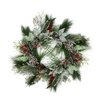 Northlight Seasonal Frosted Two-Tone Cedar and Long Needle Pine Berry Artificial Christmas Wreath