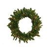 Northlight Seasonal Hunter Fir Pre-Lit Artificial Christmas Wreath