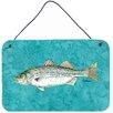 Caroline's Treasures Striped Bass Fish Aluminum Hanging Painting Print Plaque