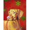 Caroline's Treasures Vizsla Red and Green Snowflakes Holiday Christmas 2-Sided Garden Flag