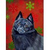 Caroline's Treasures Schipperke Red and Green Snowflakes Holiday Christmas House Vertical Flag