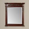 Darby Home Co Rodger Vanity Mirror