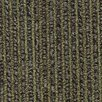 "Beaulieu Hollytex Modular Anthology 24"" x 24"" Carpet Tile in Songs"