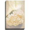Bashian Home Edelweiss set by Terri Ellis Photographic Print on Wrapped Canvas