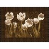 Midwest Art and Frame Baroque Tulips by Ives McColl Framed Photographic Print
