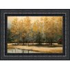 Midwest Art and Frame Serenity by Thomas Andrew Framed Painting Print