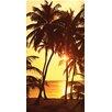Buettner USA Cotton Velour Terry 360 GSM Beach Towel