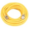 Coleman Cable Extension Cord