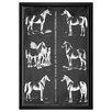 The Art Cabinet 'Principal Horse Breeds' Framed Wall Art