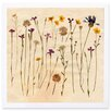 The Art Cabinet 'Vintage  Flowers' Framed Painting Print