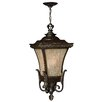 Hinkley Lighting Brynmar 1 Light Outdoor Hanging Lantern