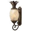 Hinkley Lighting Plantation 1 Light Wall Lantern