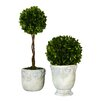 Uttermost 2 Piece Boxwood Ball Topiary in Planter