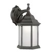 TransGlobe Lighting 1 Light Wall Lantern