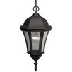 Craftmade Curved Glass 1 Light Outdoor Hanging Lantern