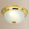 Livex Lighting 2 Light Ceiling Flush Mount