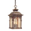 Vaxcel Essex 1 Light Outdoor Hanging Lantern